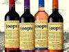 Bouteille vin design 35