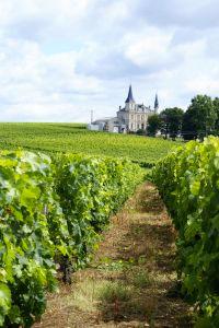 Vin et vigne à Bordeaux
