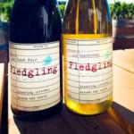 vin twitter Fledgling Wine