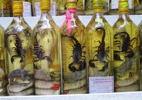 vin serpent scorpion