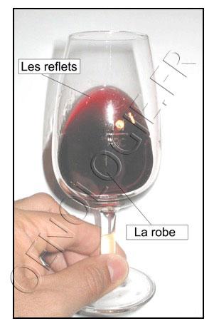 robe reflets vin